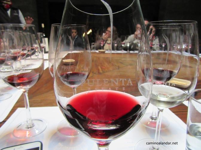 Visita y degustación en la bodega Pulenta Estate en Mendoza
